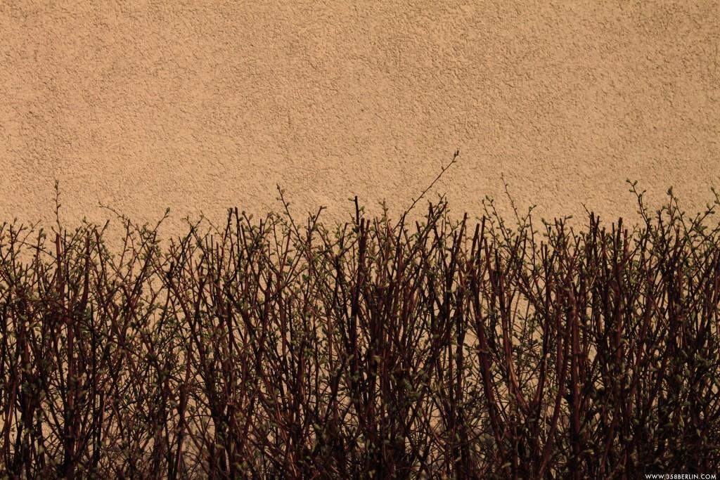Potsdam_spring. www.358berlin.com